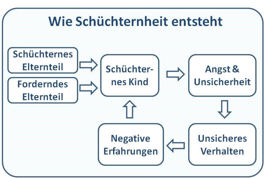 Grafik Zusammenhang zwischen Schüchternheit und Verhalten
